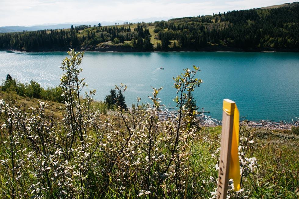Explore Pipeline Field Validation